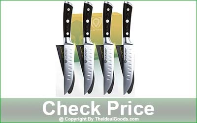 Dalstrong Gladiator Series 4-Piece Non Serrated Steak Knife Set